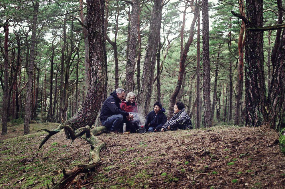 Kystfuruskogen i Ytre Hvaler nasjonalpark egner seg godt til turer for familien hele året.